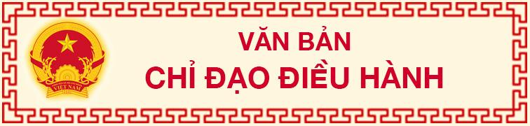 VB chi dao dieu hanh