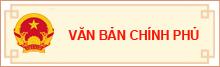 vb chinh phu